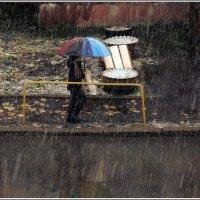 И вновь продолжается бой. И борется осень с зимой! :: muh5257