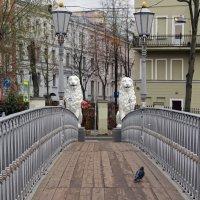 Львиный мостик и голубь :: skijumper Иванов