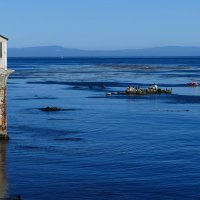 Океанский залив Монтерей, плавание на каяках... :: Юрий Поляков