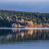 восход солнца на лес :: Георгий А