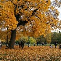 Московская осень (Царицыно) :: Елена Кирьянова