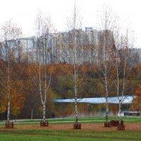 Осень в парке :: Людмила Монахова