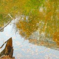 Зеркальное отражение... :: Тамара (st.tamara)