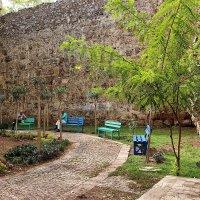 В сквере у древних стен :: Nina Karyuk