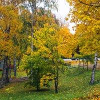 Прогулка по осеннему городу (67) :: Виталий