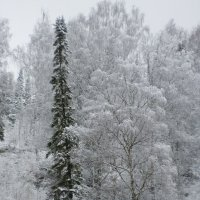 Дверь в зиму. :: Алексей Екимовских