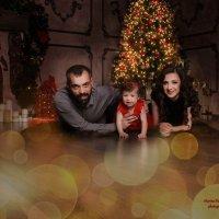 Новогодняя ночь :: Марина Мамонова