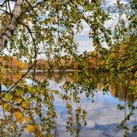"""Цикл """"Осенний пруд"""" 5 :: Viacheslav"""