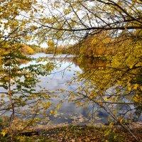 """Цикл """"Осенний пруд"""" 3 :: Viacheslav"""