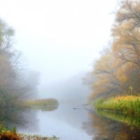 Туман над водой :: Сергей Тарабара