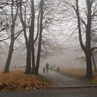 Туман :: Дмитрий Лебедихин