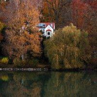 Ах, ... эта осень. :: Владимир Икомацких