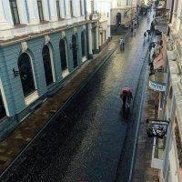 Чернівці дощить :: Степан Карачко