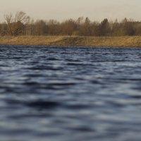 У реки :: oleg pfff