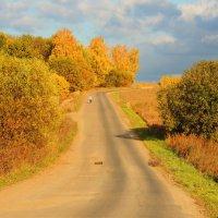 Дорога в рыжую осень :: Вячеслав Маслов