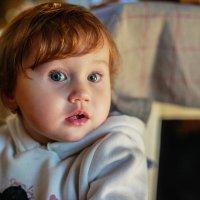 Маленькая красавица :: Таня Зайко