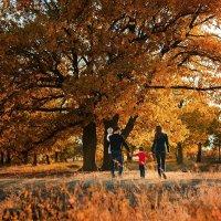 Осень :: Анна Гряколова