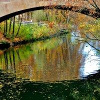 Раскрасила  осень всеми красками,  Нюрнберг :: backareva.irina Бакарева