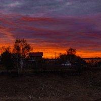 Ноябрьский вечерний цвет :: Валерий Симонов