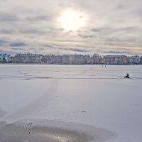 Солнечные зайчики снег припорошил... :: Aquarius - Сергей