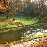 Золотая осень не отпускает... :: Ирина Румянцева