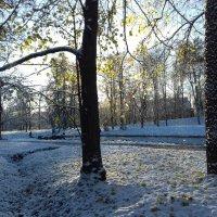 Первый снег :: Сапсан