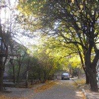 Осенний дворик :: Галина