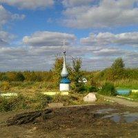 Окрестности родника за селом Пустоша. :: Виктор Мухин