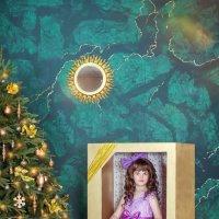 Новогодний проект Кукла :: Tatyana Zholobova