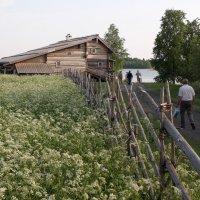 Кижи в июне :: ZNatasha -