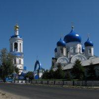 Свято-Боголюбский монастырь :: Grey Bishop
