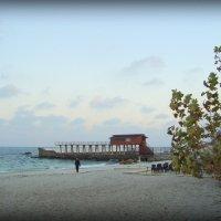 Осенний пляж. Ланжерон. Одесса :: Евгения Х