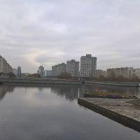 Смоленка :: Митя Дмитрий Митя