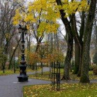 Гомель, городской парк :: Геннадий Титоренко