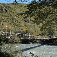 Мост пешеходный :: Валерий Дворников