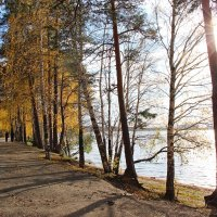 Дорога в осень :: Елена Викторова
