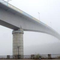 Уходя в туман :: Сергей Тарабара