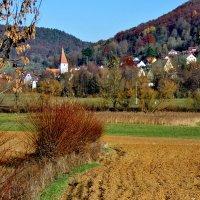 Поздняя  осень  в  Франконии :: backareva.irina Бакарева