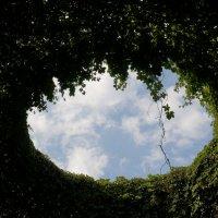 Око небесное .... :: Алёна Савина