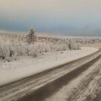 Финляндия. Дорога туда. :: dbayrak Дмитрий Байрак