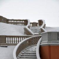 Уголки зимнего парка Петергофа. 02.2018 г. :: Евгений Васин
