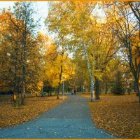 В парке. :: arkadii