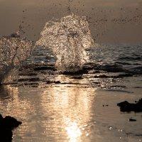 Морской фонтан :: raven owle