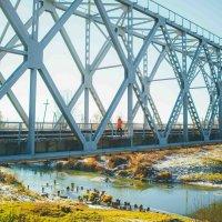 ЖД мост :: Алексей Власов
