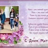 С Международным Днём матери! :: Андрей Заломленков