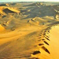 бесконечность пустыни :: Георгий А