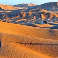 пикник в пустыни :: Георгий А