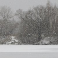 Снег идет,снег идет... :: Жанна