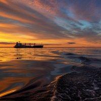Финский залив. :: Юрий