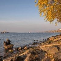 Волжский пейзаж цвета осени :: Регина Волгина